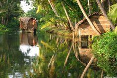 Inde Randonnée au Kerala