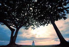 Wailea Beach Marriott Resort & Spa, Maui, Hawaii   Stunning Sunset Views Are Served Nightly   Save 40% Off   Book Now!