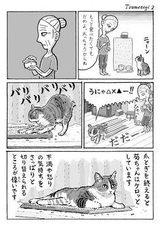 """湊文(猫漫画)さんのツイート: """"2ページ猫漫画「爪とぎする」… """""""
