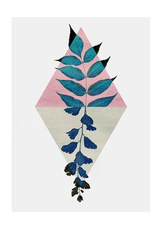 East End Prints - Geometry and Nature, £19.95 (http://www.eastendprints.co.uk/products/geometry-and-nature.html)