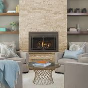 The Majestic Ruby Direct Vent Gas Fireplace Insert - 30 Vented Gas Fireplace Insert, Direct Vent Gas Fireplace, Fireplace Inserts, Fireplace Stores, Log Fires, New Home Construction, Home Technology, Hearth, Interior And Exterior