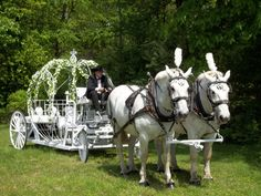 Home of the Cinderella Carriages and Famous White Horses for Wedding s or any Special Event Horse And Carriage Wedding, Horse Carriage Rides, Horse Wedding, Wedding Pics, Dream Wedding, Dream Party, Wedding Ideas, Wedding Stuff, Wedding Planning