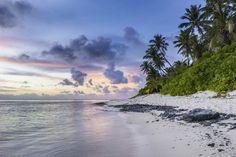 10 beneficios de la playa para grandes y pequeños - Wikiduca
