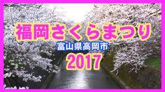 【散策物語】福岡さくらまつり 2017 富山県高岡市