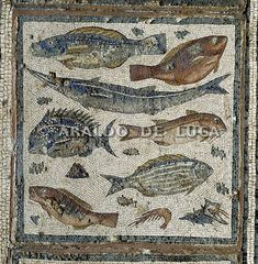 Mosaico con pesci - (I sec.a.C./I sec.d.C.) - da Dar Buk Amméra - Museo di Tripoli, Libia