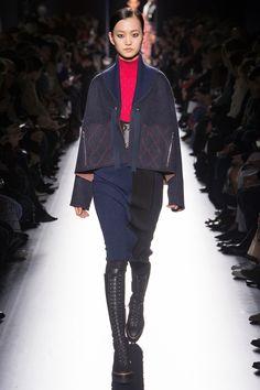 Hermès Fall 2017 Ready-to-Wear Fashion Show - Wangy Xinyu (Next)