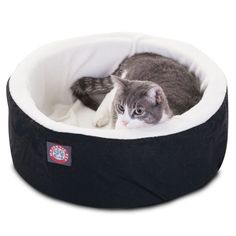 Majestic Pet Cuddler Cat Bed | AllModern