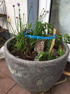 DIY Feengarten, Miniaturgarten – Kräutergarten – Mamas Welt