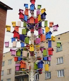 A man-made tree-bird house...almost like an apartment block but for birds !!!!! - Facebook