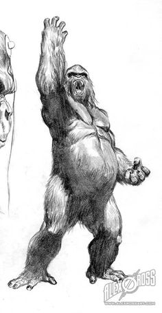 Gorilla Grodd Sketch •Alex Ross