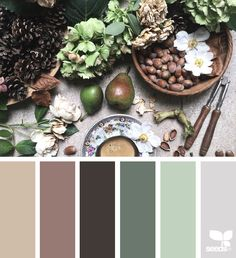Foraged Hues via @designseeds