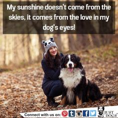 Indeed ..!! :)  #JustDogs #DogLove #DogOwners #DogEyes