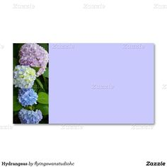 Hydrangeas Double-Sided Standard Business Cards (Pack Of 100) http://www.zazzle.com/flyingswanstudiohc*