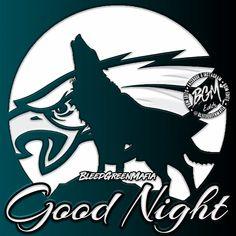Philadelphia Eagles Good night meme Good Night Meme, Eagles Memes, Philadelphia Eagles Super Bowl, Fly Eagles Fly, Football Memes, Armor Of God, Green, Party, Image