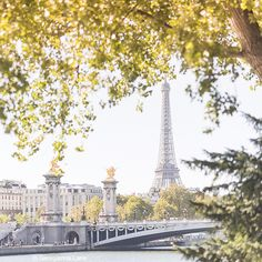 Autumn in Paris by Georgianna Lane