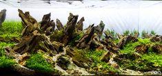 20LBS Ohko Dragon Stone -- -- rock ADA aquarium fish plant shrimp Driftwood…