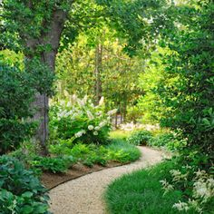 7 Easy Budget-Friendly Backyard Makeovers:  Use 1/4 inch rock gravel, stakes to define the route, and then bend edging to contain the path.  Can be used to draw the eye elsewhere.