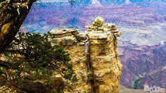 Grand Canyon, Arizona by Willy Sanjuan