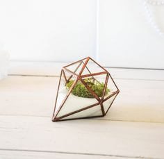A diamond shaped terrarium by NojaGlassDesign via etsy.  Diamond decor is a trend on its own right now, so why not combine it with our love of terrariums!