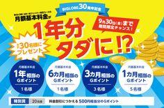 【限定】月額料金1年分がタダに!?キャンペーン