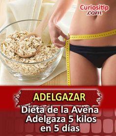 Dieta de la Avena para Bajar de Peso | Curiositip