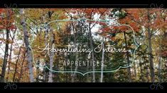 Adventuring Interns s1e3