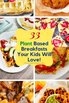 If you are new to the plant based diet, you may be looking for some delicious breakfast ideas to keep you and your family full all morning! Plant based breakfast recipes are a great way to stay full all morning long! Check out these 33 Dairy free, vegan, wholesome and delicious recipes to start your day with a healthy breakfast! Blueberry Oat Bars, Baked Pumpkin Oatmeal, Delicious Recipes, Yummy Food, Diet Grocery Lists, Coconut Flour Pancakes, Sweet Potato Waffles, Cherry Smoothie, Vegetarian Italian