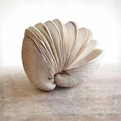 Book of the Sea Clam Shell Book Shell Journal Hand Bound by Odelae