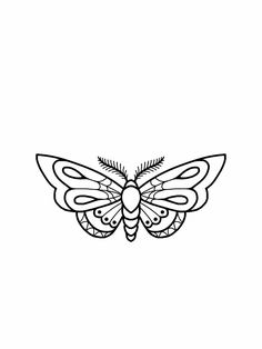 Moth tattoo flash design                                                       …