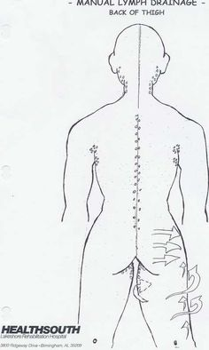 what is manual lymph drainage