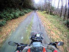 Tiger 800 XC versus KTM 950 Adventure on Wolf Creek Rd Oregon - YouTube https://www.youtube.com/watch?v=EDLIs3fhWiQ#action=share
