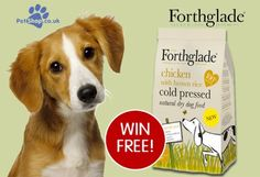 Win a bag of Forthglade Chicken Cold-PressedcDog Food Cold, Animal, Chicken, Pets, Bag, Animals, Bags, Animals And Pets, Cubs