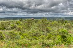 Bokor Hill Station | One for the Road Photography