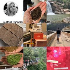 The experience called 'Munnar' Through the camera lens of our guest a minimum 5 nights destination Bhastrika Pranayama, Best Yoga Retreats, Surya Namaskar, How To Cure Depression, Kerala Tourism, Munnar, Breathing Techniques, Oxidative Stress, Stress And Anxiety