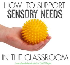 How to Support Sensory Needs in the Preschool Classroom. Do you have kids who fidget, hate loud noises, can't stand the taste, texture, or smell of certain foods, can't touch certain fabrics? Read this to find out how you can support these sensory needs in your pre-k or kindergarten classroom.