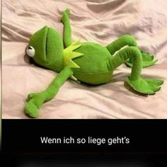 Wenn ich so liege, geht's. Humor, Me Adora, Dinosaur Stuffed Animal, Kermit, Golf, Thoughts, Funny Memes, Funny Pictures, Words