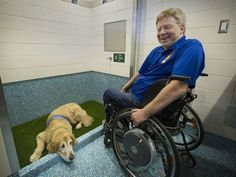 Vancouver Airport opens 'pet-relief' area for service dogs that gotta go | Accessible Travel | Scoop.it