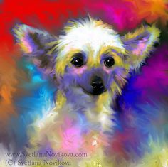 chinese crested painting   Flickr - Photo Sharing!