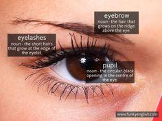 Eye - www.funkyenglish.com