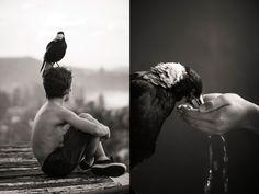 Fotógrafo registra rotina de seu filho e o pássaro de estimação da família - Pêssega D'Oro