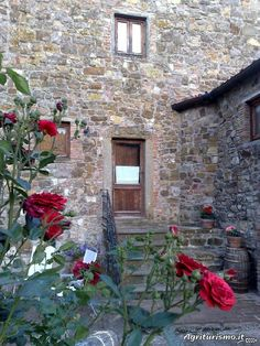 Planning a Family Vacation to Italy: Agriturismos - Agritourismo Podere Belvedere Olistico in Tuscany near Florence