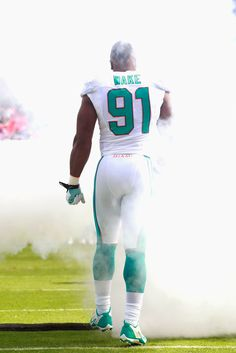 50 Best Cameron Wake images in 2014 | Nfl miami dolphins, Miami  supplier