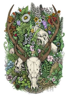 Hunter and prey. Deer, cat and wolf skulls among flowers and leaves. Mixed media artwork.
