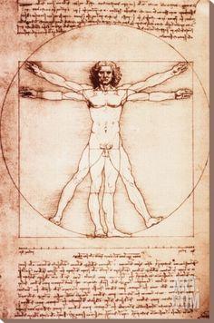 Vitruvian Man Stretched Canvas Print by Leonardo da Vinci at Art.com