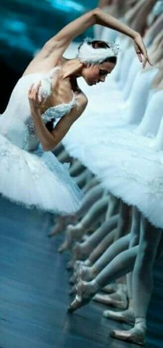 I just cry in this ballet. Dance Sing, Just Dance, Holy Body, Swan Lake Ballet, Body Electric, Ballet Photography, Ballet Beautiful, Hollywood Actresses, Gymnastics