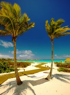 It's been decided we are going to Great Exuma, Bahamas for our honeymoon!