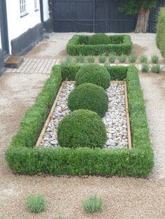 Boxwood Garden, Garden Hedges, Topiary Garden, Garden Trees, Topiary Trees, Backyard Plan, Backyard Landscaping, Landscaping Ideas, Box Hedge Border