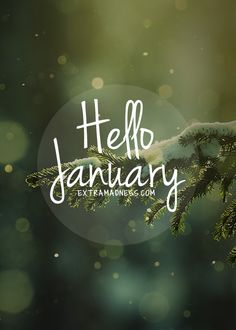 Wandering the Good.January to Dezember Seasons Months, Days And Months, Months In A Year, 12 Months, Bullet Journal Images, Bullet Journal Cover Page, January Pictures, January Images, Hello January Quotes