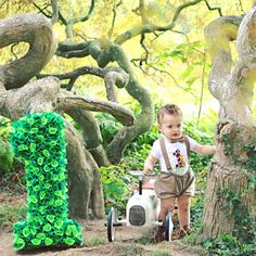 Zhakelina Muca added a photo of their purchase Lion King Birthday, Jungle Theme Birthday, Wild One Birthday Party, Baby Boy Birthday, Jungle Party, Dinosaur Birthday Party, Safari Theme, 1st Birthday Parties, Cake Smash Outfit Boy