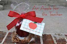 Apple Teacher Gift Tag {Free Printable}